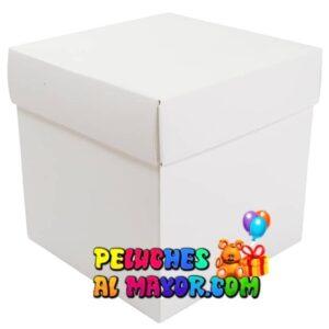Cajas Cubo Grande blanco x12 unid